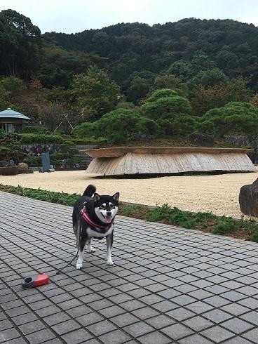 201610はるちん-2