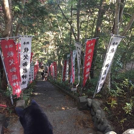 201611はるちん-2
