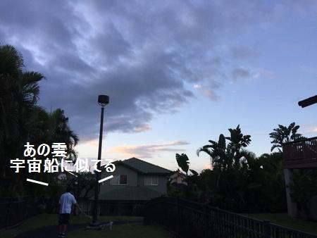 IMG_6729moji.jpg