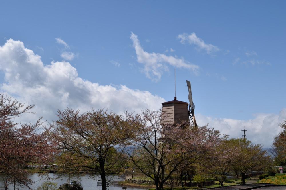 琵琶湖風車村DSC_8064