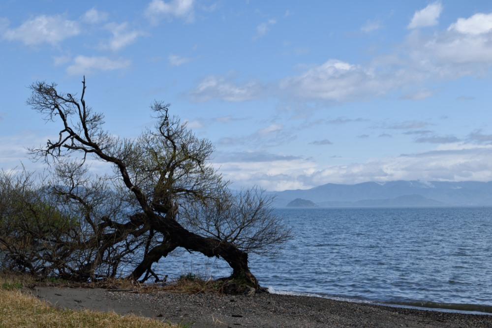 琵琶湖DSC_8057
