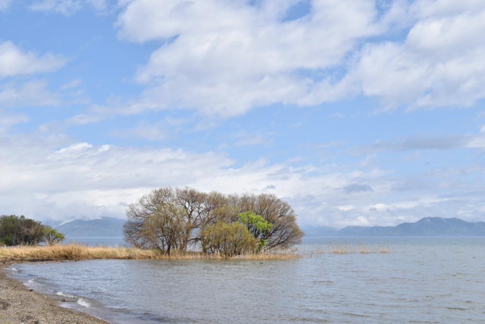 琵琶湖DSC_8047
