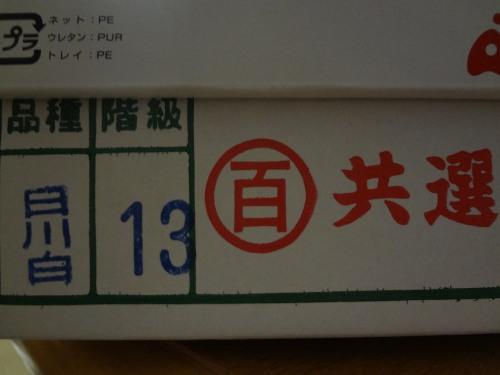 桃DSC02539