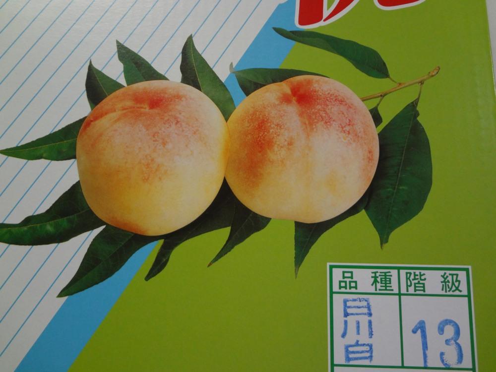 桃DSC02541