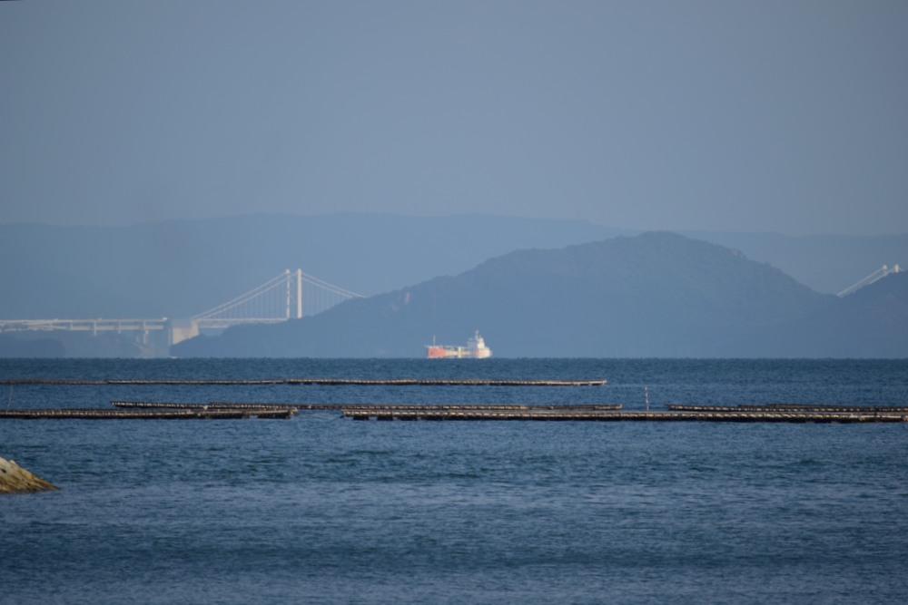 海DSC_0975