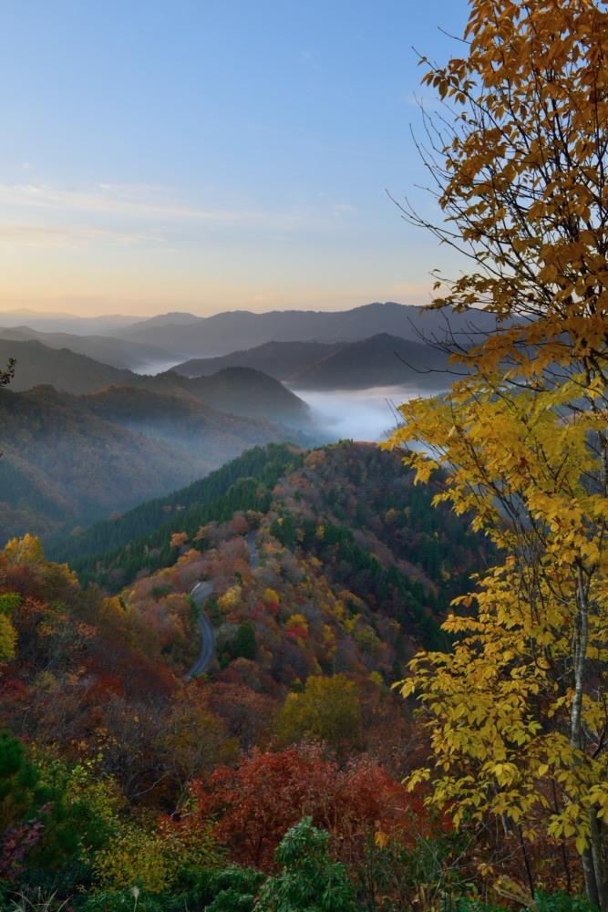 縦小入峠朝日が昇った雲海と紅葉DSC_2642