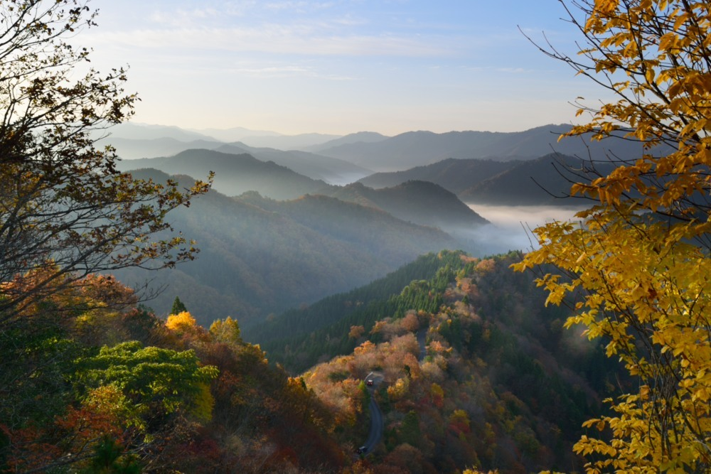 小入峠朝日が昇った雲海と紅葉DSC_2711