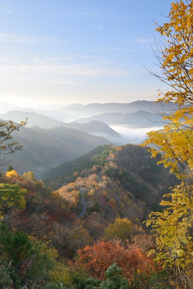 小入峠朝日が昇った雲海と紅葉DSC_2704