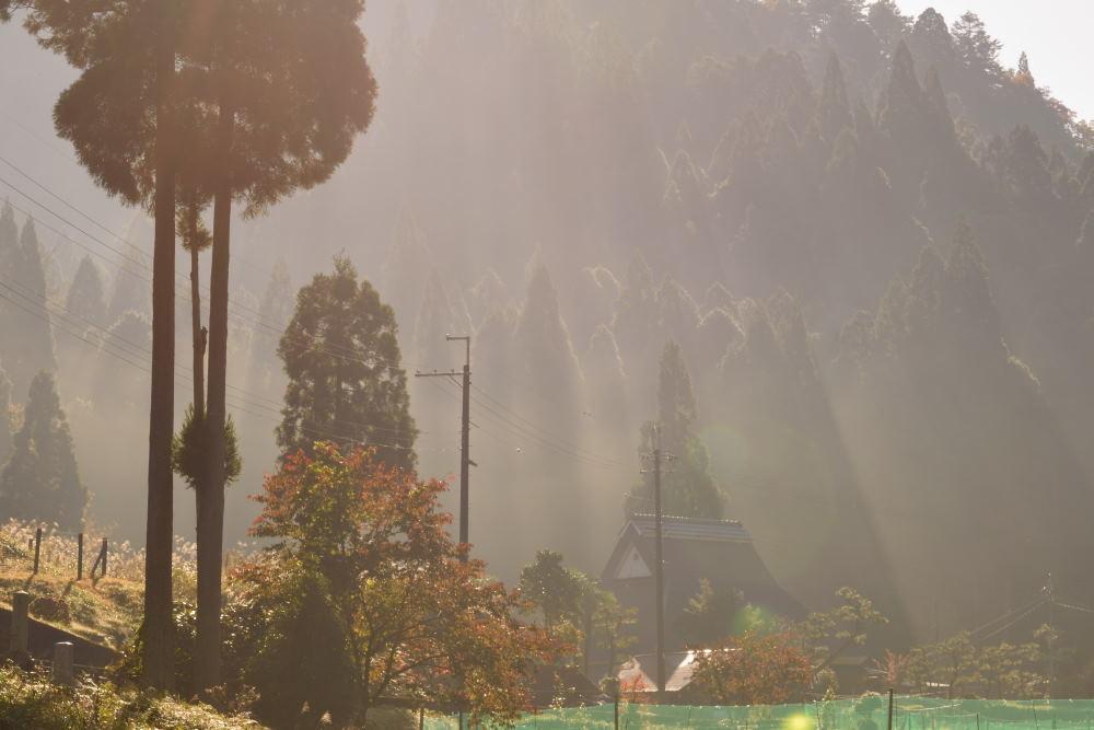 杉林かやぶき屋根光芒DSC_2843