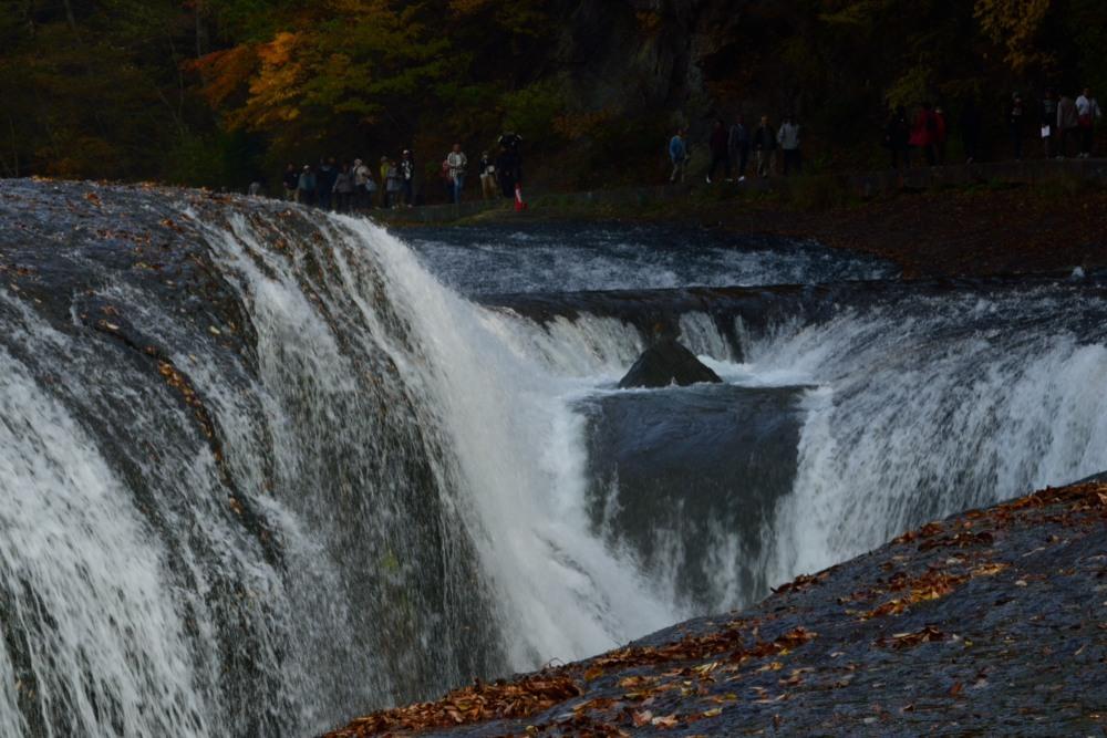 滝前からDSC_2422