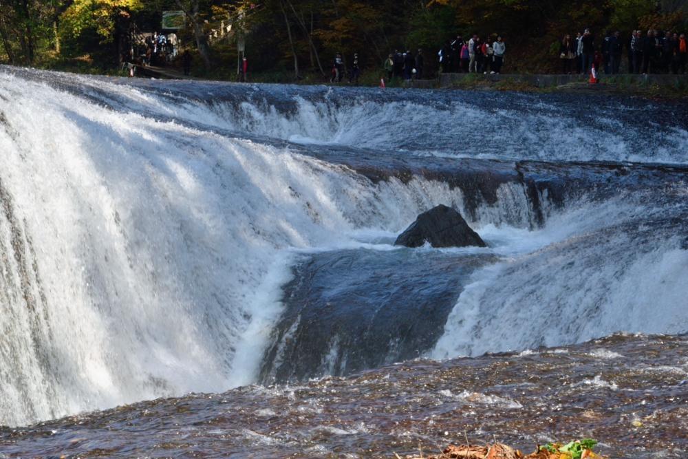滝滝DSC_2416