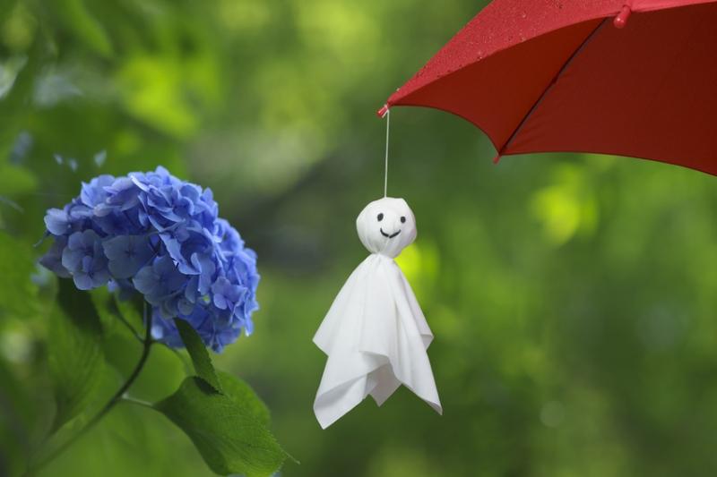 rainyseason1.jpg