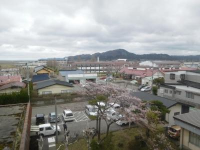 朝散歩 010