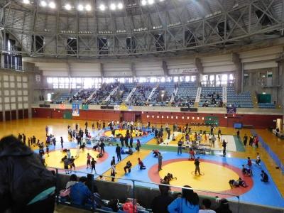 レスリング北日本大会 073