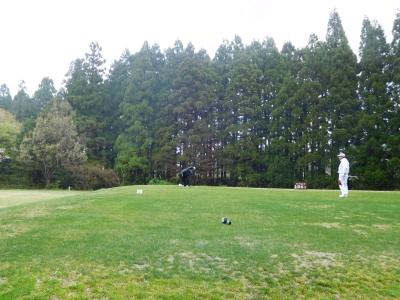 ゴルフ椿代 006