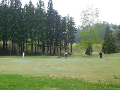 ゴルフ椿代 014