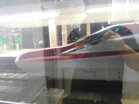 秋田駅前からす森 037