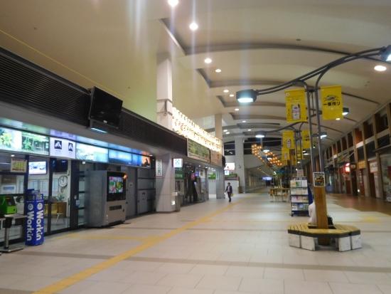 秋田駅前からす森 035