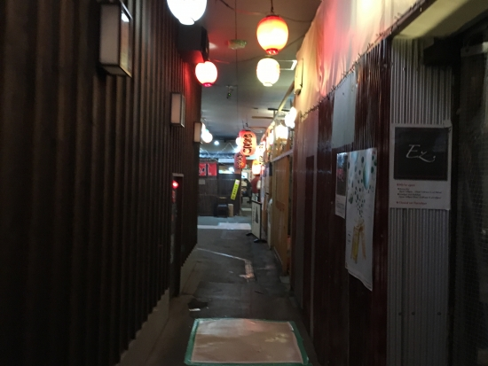 秋田イルミネーション 031
