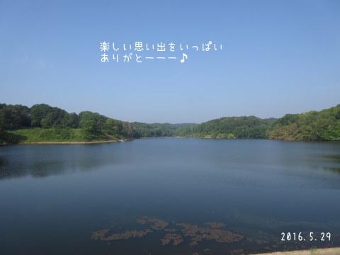 IMG_6382-1.jpg