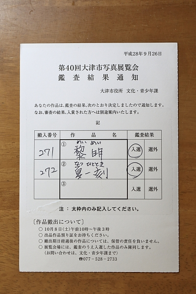2016(2389)