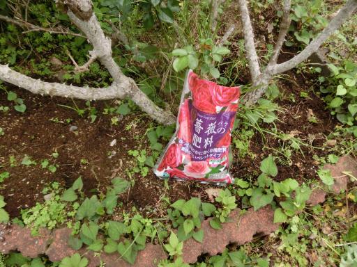 バラに肥料