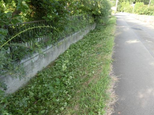 水路の草刈3
