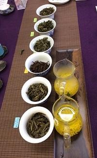 2016年秋新茶会