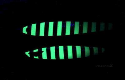 グロータイプ蓄光状態