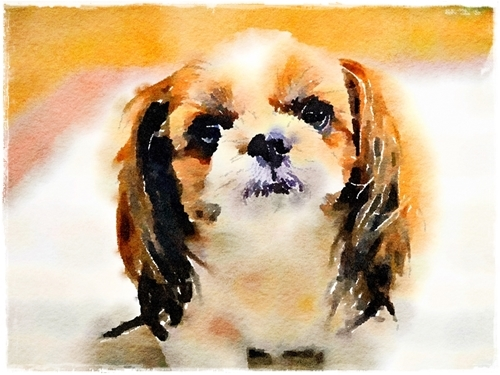 Waterlogue - コピー (5)