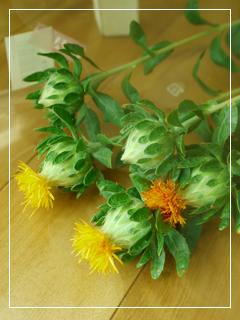 flowerMotif145-08.jpg