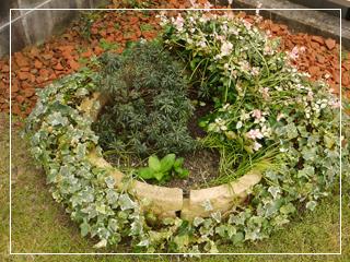 garden2016-70.jpg