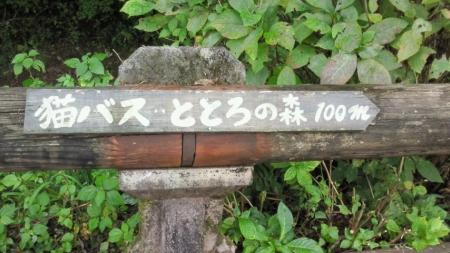 NEC_1815.jpg