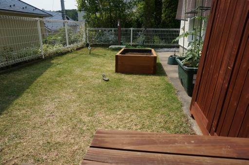 レイズド・ベッド 家庭菜園