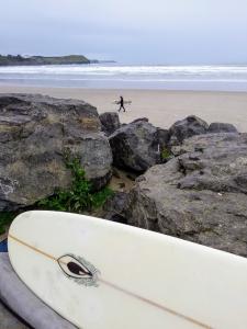 surfingrossy121216