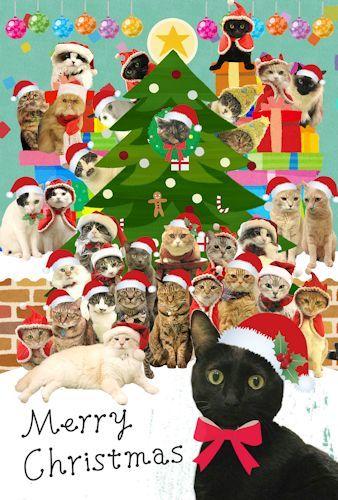 Eastクリスマスカード20161220