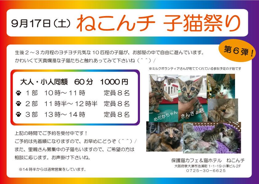 9月17日 子猫祭り チラシ