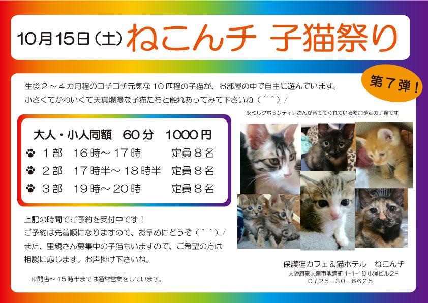 10月15日 子猫祭り チラシ