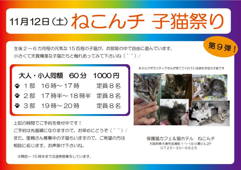 11月12日 子猫祭り チラシ
