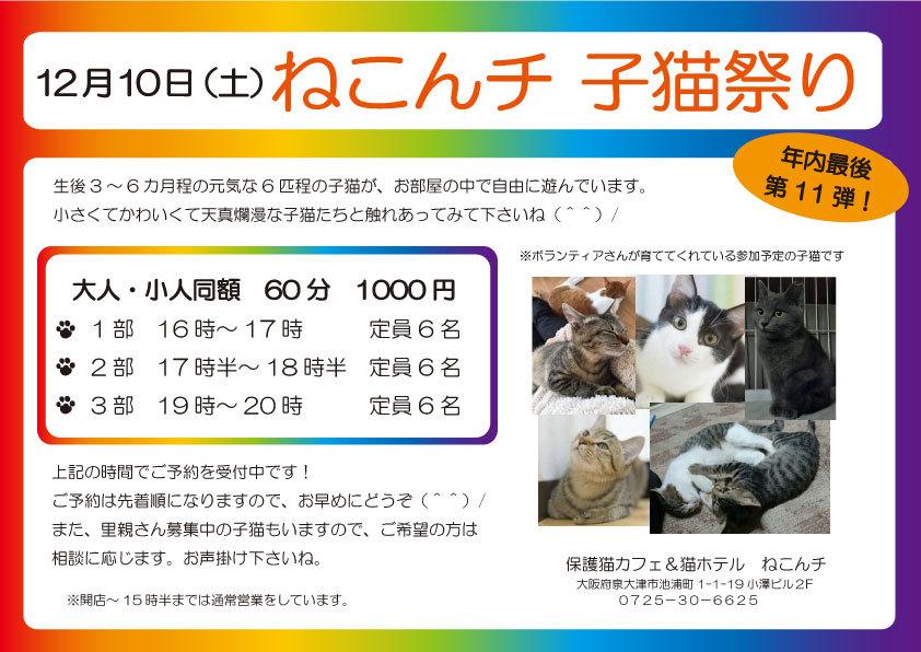 12月10日 子猫祭り チラシ
