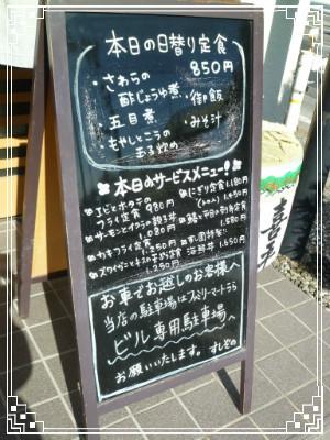 P1070236.jpg