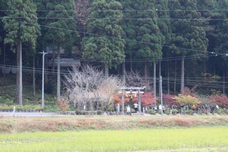 モネの池(岐阜) 001a