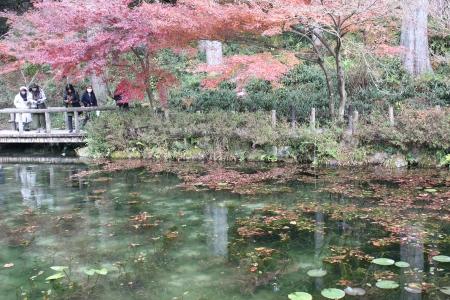 モネの池(岐阜) 014a