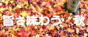 20160925 秋 ブログ4