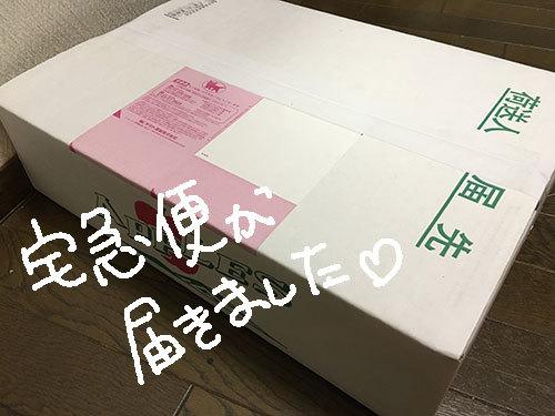 20161129_001 - コピー