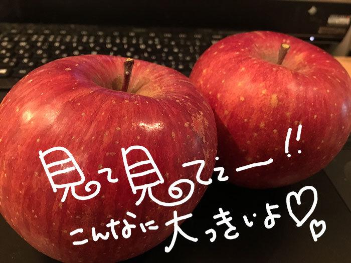 20161129_004 - コピー