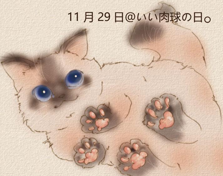 20161129_007.jpg