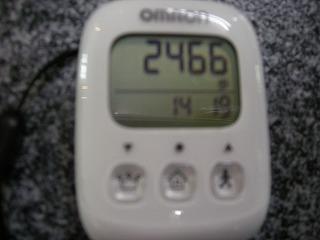 s-DSCN3064.jpg
