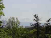 丸馬出しからの富士山