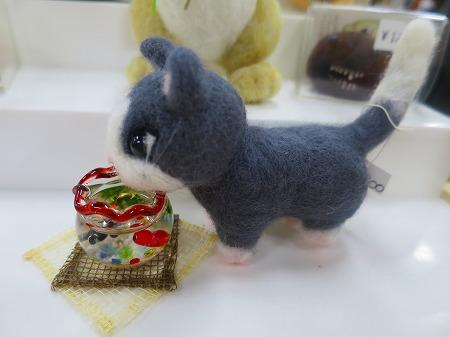 160619 ラビフィ 猫